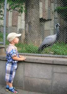 Зоопарк 19.07.09